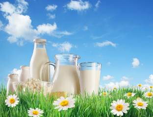 Pasteurized Processed Milk